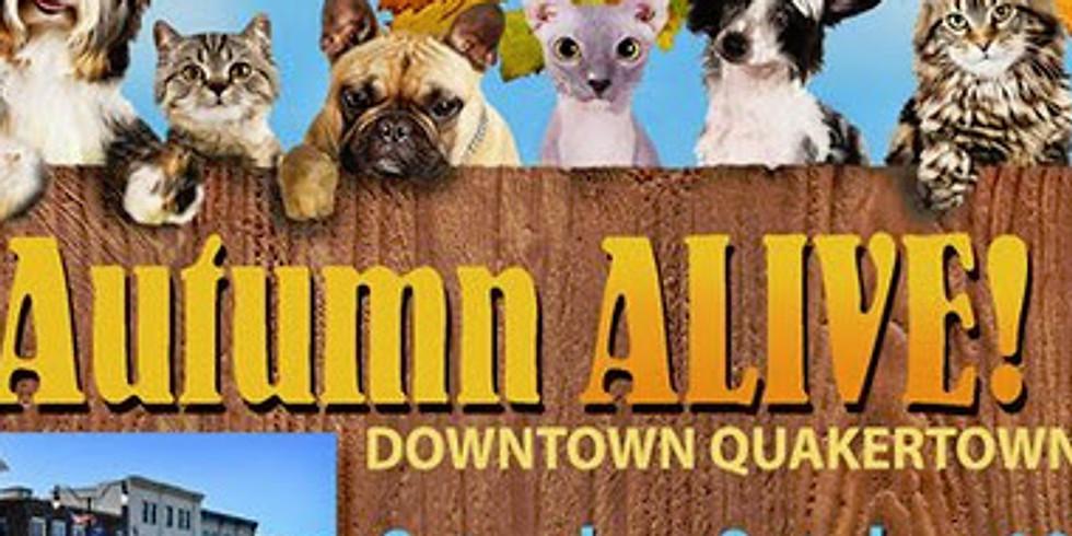 Autumn Alive Festival:  145th table