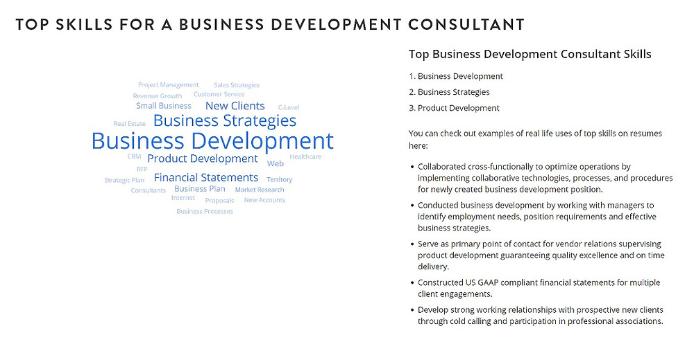 business-development-consultant-skills