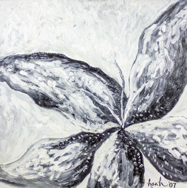 Black and White Flower 36x36 Oil on Canvas