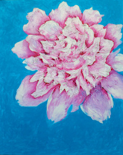 Pink Peony 60x48 Oil on Canvas