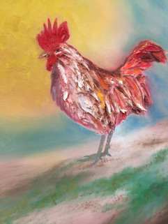 Rooster  40x30 Oil on Canvas