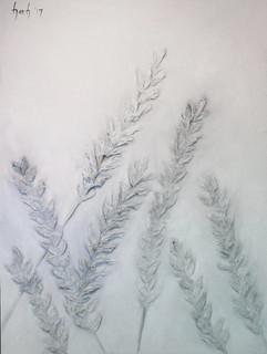 White Lavender 48x36 Oil on Canvas