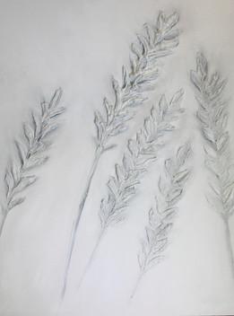 White Lavender 40x30