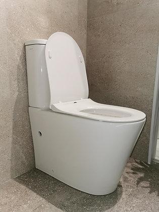 Toilet Mirage