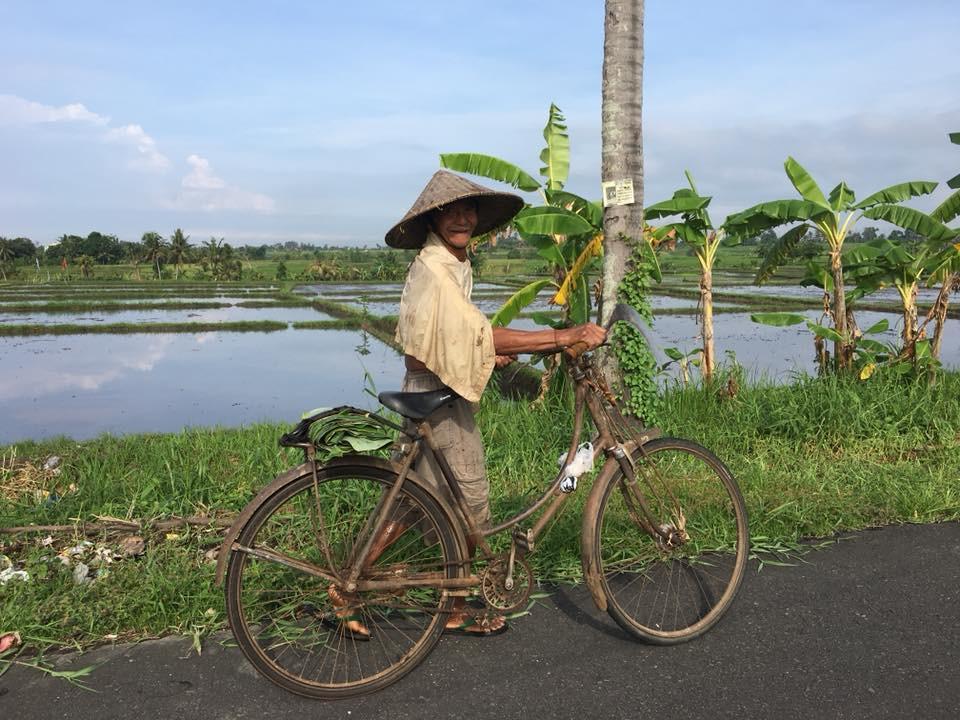 Balijský farmář odjíždí z rýžových polí
