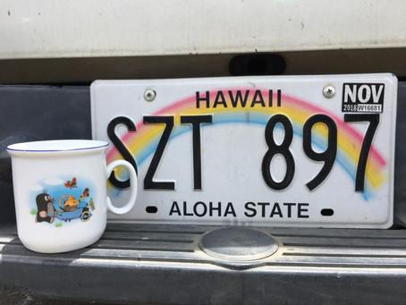 Krteček a další české hitovky na Havaji
