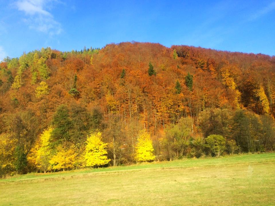 Podzim v ČR je surrealisticky barevný