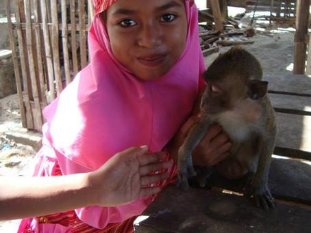 Moyo Island & Keramat Island (Indonésie)