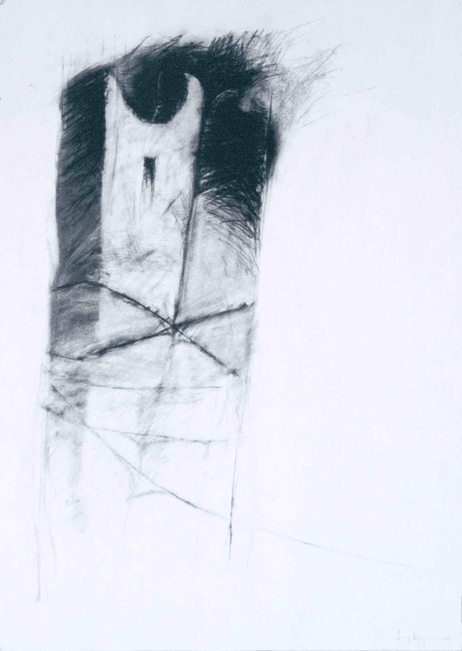 Untitled (54)