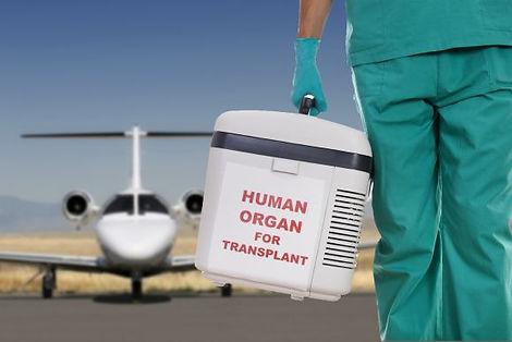 organ-jet.jpg