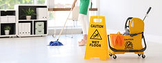 LMTS Cleaning services-1033x408.jpg