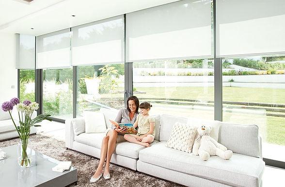 somfy-interior-blinds.jpg