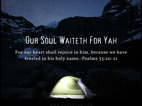 Psalms 33:20-21
