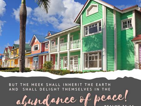 An Abundance of Peace
