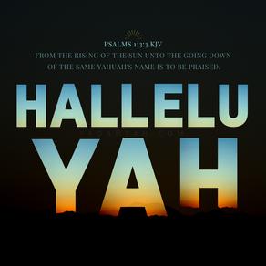 Psalms 113:3