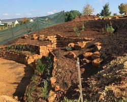 Starting the planting#plantinginHowick