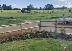 Planted!_#gardenhelp_#gardendesign