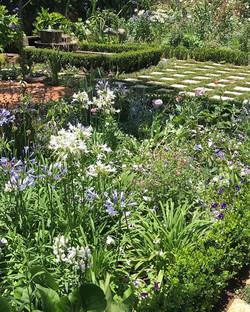 In my Garden_#landscapinginHowick_#garde