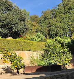 In Santa Barbara California - the struct