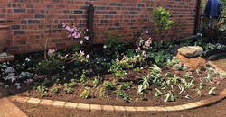 After!_#gardendesign.  #spinggardens
