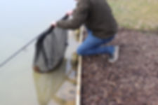 fishcare4.jpg