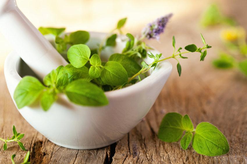 Herbal Medicine, Naturopathy & Iridology