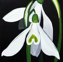 First Snowdrops