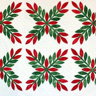 Peta Grounds - Laurel Wreath