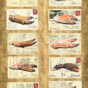 Ten Crustacean Claws