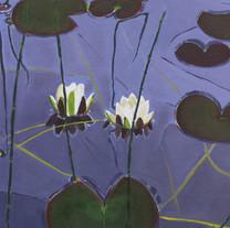 Lilies, Loch Kilchrist
