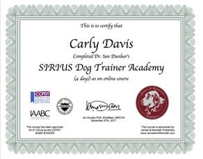 SIRIUS Trainer Academy