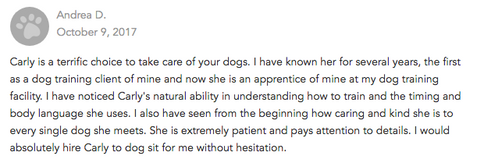 Dog Sitting Review