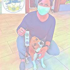 Dog Trick Beagle