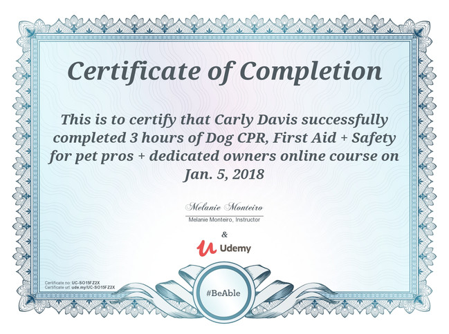 DOG CPR & First Aid Certificate