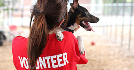 Volunteers are inspiring!