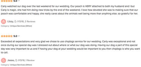 Wedding Day Dog Handling Review
