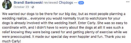 Wedding Dog Handling Review