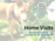 HomeVisitsHooper.png