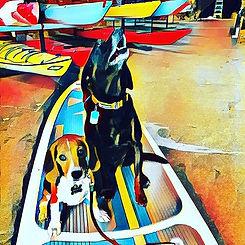 Doggie Duos
