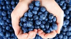 arandanos-azules-forma-de-corazon-con-ma