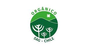 organico-chile.jpg
