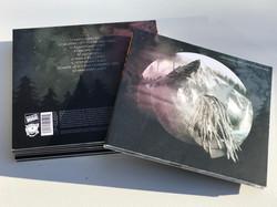 Conquering Lion 4th Studio Album