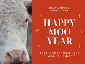 Start 2020 by Helping a Farmer