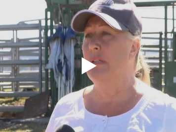 Regional mental health Farmer Lauren