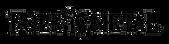 Folk N Metal Logo.png