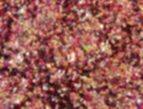 Fall Festival Nail Sugar.jpg