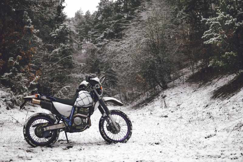 a_motorcycle_in_the_snowy_forest_800x534