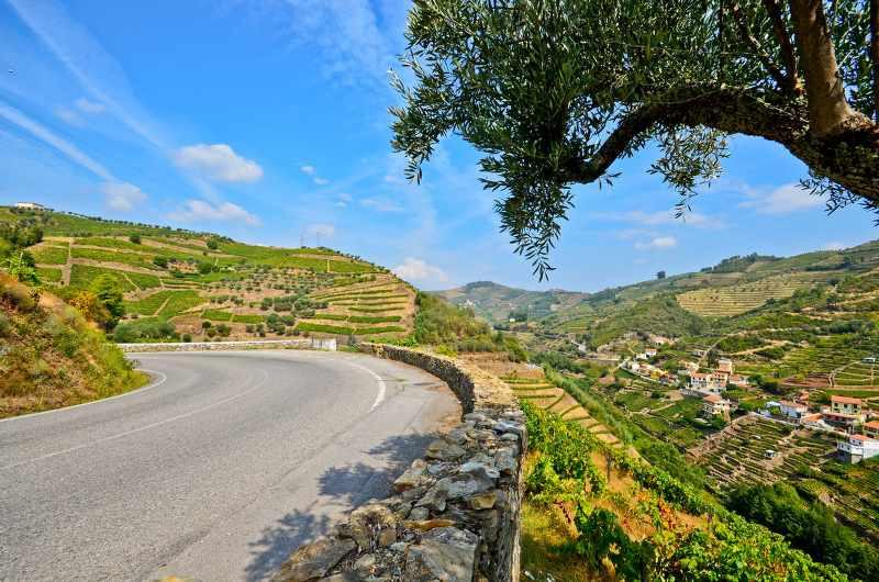 n222 road in portugal_800x530.jpg