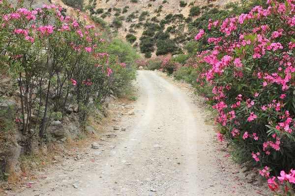 agiofarago gorge crete off road
