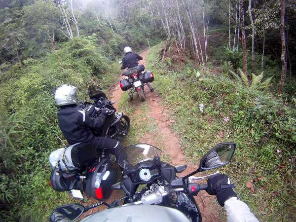 three riders in the jungles with their motorbikes
